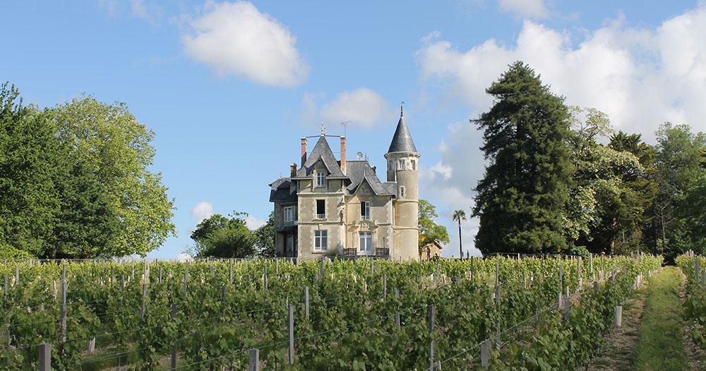 VIGNOBLE-Chateau-la-Breduriere-Vin-de-Mareuil